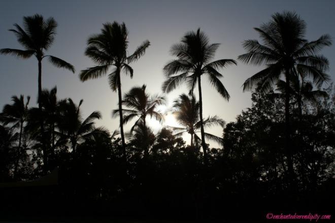 Hawaii 'The Big Island'