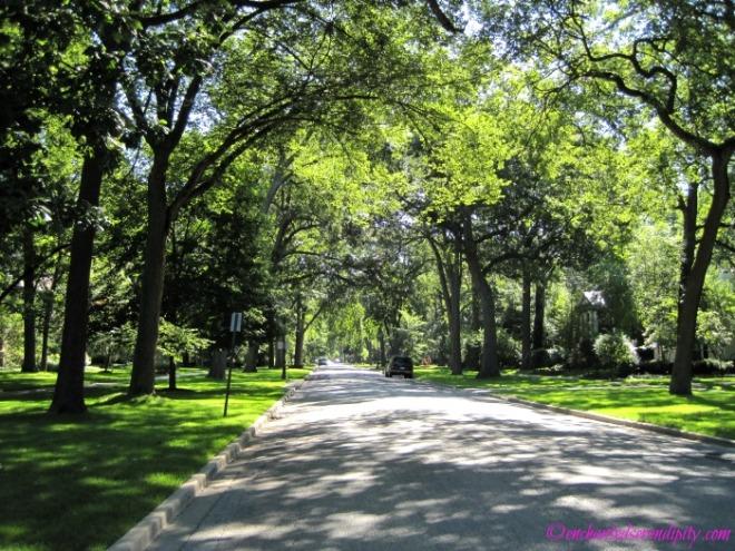 Evanston, Illinois's beautiful streets