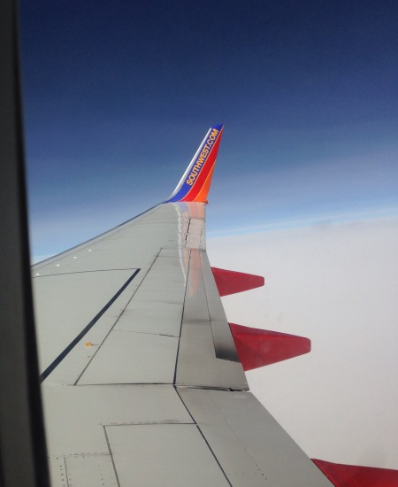 Fly Southwest