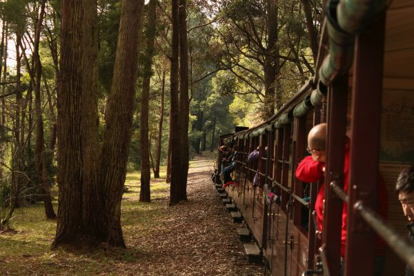 Riding On Puffing Billy