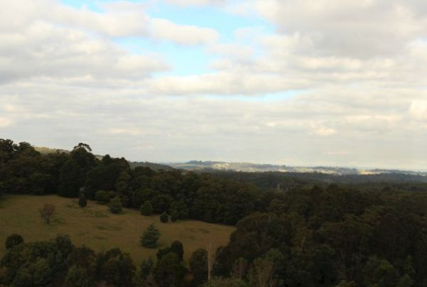 The View From Puffing Billy